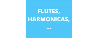 Flûtes, harmonicas,...
